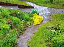 Het onweer van de de lenteregen in een tuin in Duitsland royalty-vrije stock afbeelding