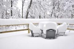 Het Onweer van de sneeuw Stock Foto's
