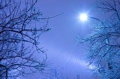 Het onweer van de sneeuw Royalty-vrije Stock Foto's