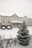 Het onweer van de sneeuw stock afbeelding