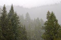 Het Onweer van de sneeuw Royalty-vrije Stock Afbeelding