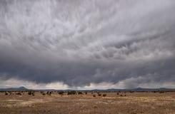 Het Onweer van de woestijn Royalty-vrije Stock Afbeelding