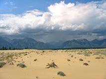 Het Onweer van de woestijn Stock Fotografie