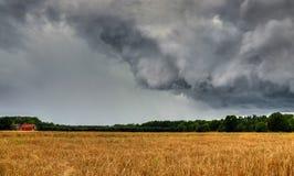 Het onweer van de zomer komt Royalty-vrije Stock Fotografie