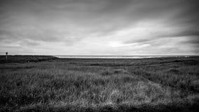 Het Onweer verdonkert alles Al Manier door het Eind van de Horizon die de Donkere Hemel en het Grasgebied onder het in Lang behan Royalty-vrije Stock Foto
