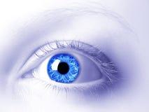 Het oog Royalty-vrije Stock Afbeeldingen