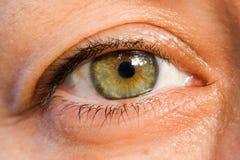 Het oog Royalty-vrije Stock Foto's
