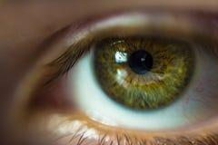 Het oog Royalty-vrije Stock Foto