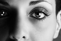 Het oog? mooi jong blauw oog van de vrouw stock foto