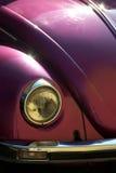 Het oog van de kever Stock Foto
