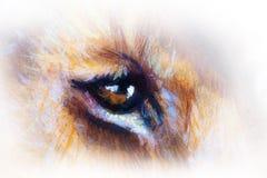 Het oog van de leeuwwelp het dierlijke schilderen op uitstekend document Royalty-vrije Stock Afbeeldingen