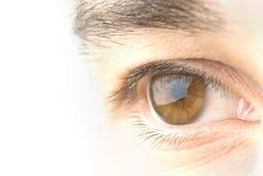 Het oog van de mens stock foto's