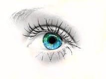 Het oog van de schoonheid Stock Fotografie