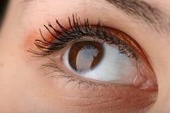 Het oog van de schoonheid stock afbeeldingen