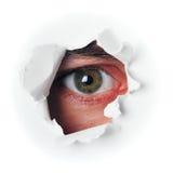 Het oog van de spion Stock Fotografie
