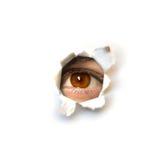 Het oog van de spion Stock Foto