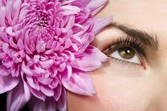 Het oog van de vrouw Stock Foto's