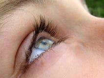 Het oog van de vrouw Stock Fotografie