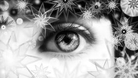 Het oog van de vrouw met sneeuwvlokken royalty-vrije stock afbeeldingen