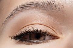 Het oog van het close-up met manier lichte samenstelling, lange wimpers Royalty-vrije Stock Foto's