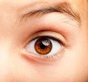 Het oog van het Ittlemeisje Stock Foto