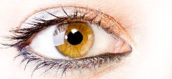Het oog van het meisje Royalty-vrije Stock Foto's