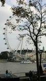 Het oog van Londen Stock Foto