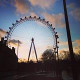 Het Oog van Londen bij zonsondergang Stock Afbeeldingen