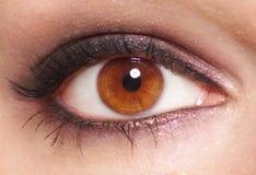 Het oog van vrouwen Stock Foto