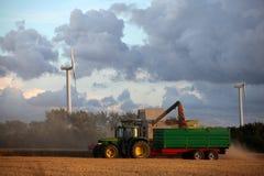 Het oogsten. Stock Fotografie