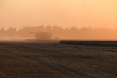 Het oogsten bij zonsondergang Stock Foto