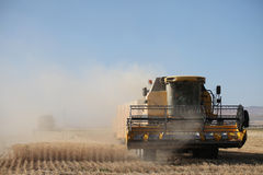 Het oogsten combineert in de tarwe Stock Fotografie