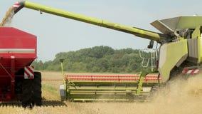 Het oogsten op het Tarwegebied combineren en van de de Machinestechnologie van de Tractorlandbouw het Gewas van de het Voedselwij stock video