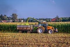 Het oogsten in Polen Stock Foto's