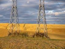 Het oogsten van graan stock afbeelding