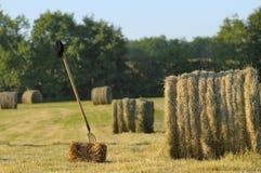 Het oogsten van hooi twee Stock Fotografie