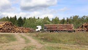 Het oogsten van hout opent een bos in Rusland het programma stock footage