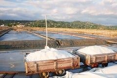 Het oogsten van overzees zout bij de zoute installaties van Secovlje, Royalty-vrije Stock Foto's