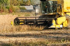 Het oogsten van sojaboongebied met maaidorser royalty-vrije stock afbeelding