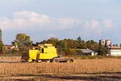 Het oogsten van sojaboongebied met maaidorser stock foto
