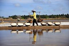 Het oogsten van zout in mekong delta Royalty-vrije Stock Fotografie