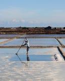 Het oogsten van zout op zoute gebieden in Nha Trang, Vietnam stock foto's