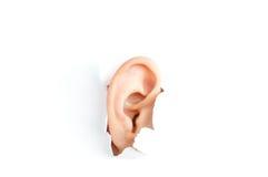 Het oor van de vrouw Royalty-vrije Stock Afbeelding