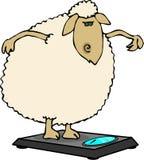 Het op dieet zijn schapen royalty-vrije illustratie