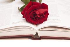 Het open boek en rood nam toe Royalty-vrije Stock Afbeeldingen