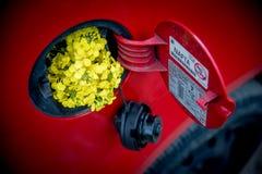 Het open deksel van de brandstoftank in rode auto met raapzaad stock foto