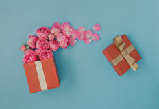 Het open rode hoogtepunt van de giftdoos van roze rozen royalty-vrije stock fotografie