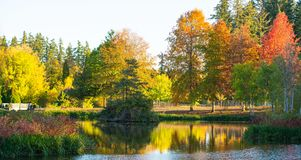 Het openbare park van Oregon in de herfsttijd stock afbeeldingen