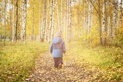 Het openlucht de kinderen van het de herfstpark lopen Stock Afbeeldingen