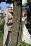 Het openluchtlandschap van het huwelijk Stock Fotografie